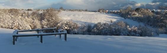 Snow on field 1